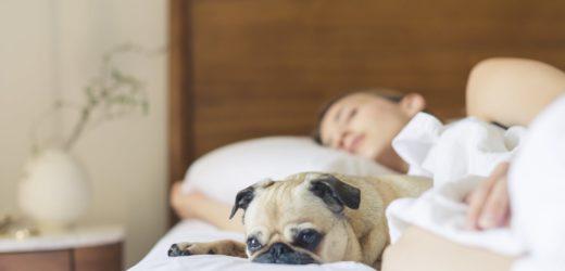 5 sfaturi pentru un somn odihnitor