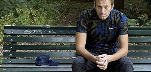 Alexei Navalny isi ofera cateva luni de recuperare inainte de a se intoarce in Rusia